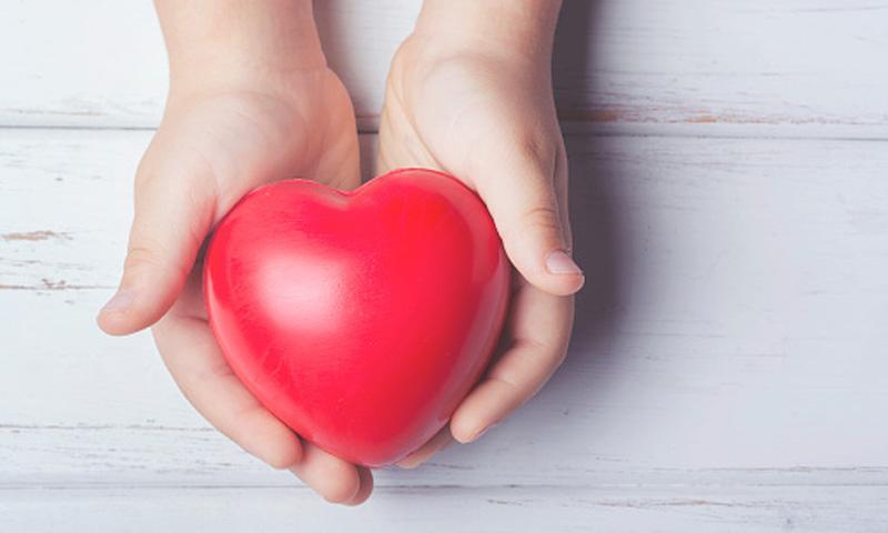 Trasplantes de órganos: tres mitos que empañan los avances de la ciencia