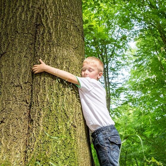 Enseña A Tus Hijos A Cuidar El Medio Ambiente Con Estos Pequeños Gestos