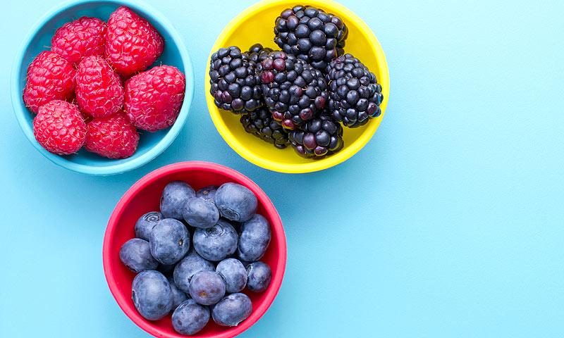 ¿Cuáles son los alimentos ricos en antioxidantes?
