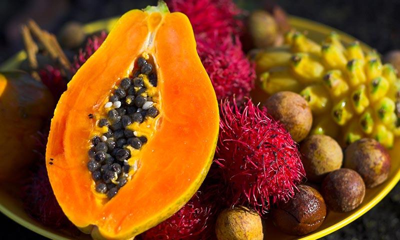 Frutas exticas e raras no brasil frutas exoticas o raras t - Frutas tropicales y exoticas ...
