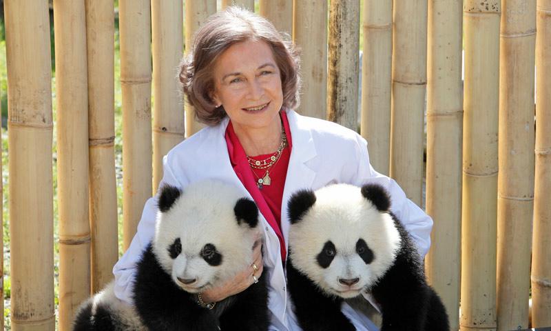Doña Sofía y otras personalidades comprometidas con el reino animal