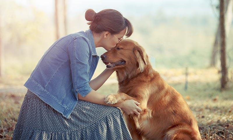 Las mejores razas de perro si sufres depresión