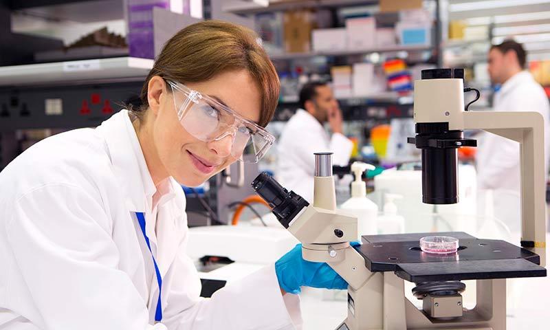Inmunoterapia contra el cáncer: un tratamiento revolucionario en marcha