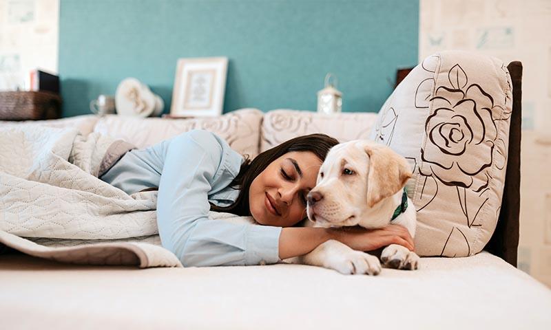 Pros y contras de dormir con perros