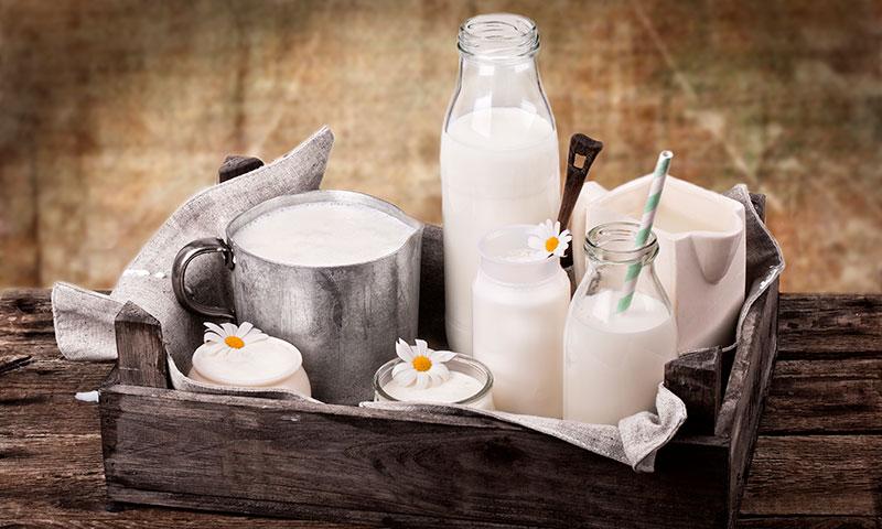 ¿Sabías que existen antinutrientes que limitan la absorción del calcio?