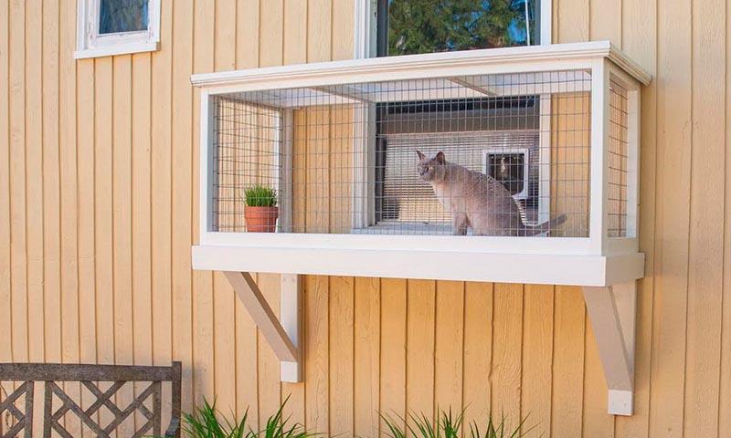 Existen los patios para gatos y se llaman catios