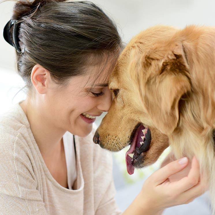 Tu perro tiene muchas cosas que decirte, y lo hace de estas formas