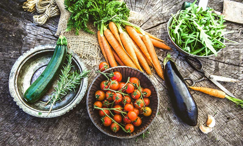 ¿Qué verduras y hortalizas debo plantar en primavera?