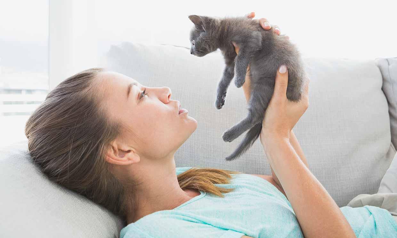 Aplicaciones móviles que facilitan la adopción de animales