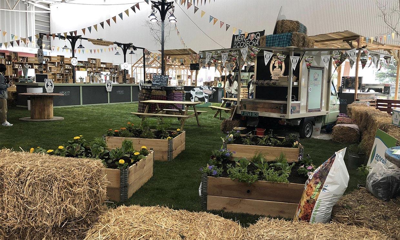 'Mercado de la cosecha', un proyecto para incentivar la vida rural en Galicia