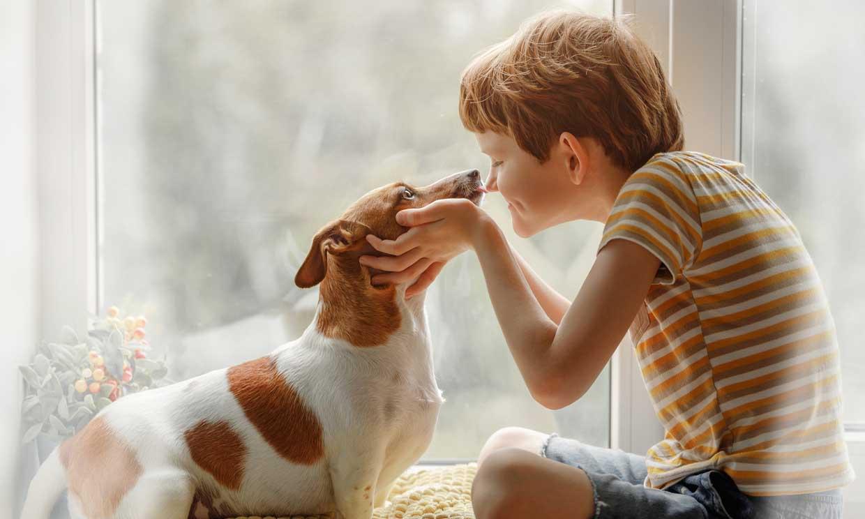 Dime cómo son tus hijos y te diré qué raza de perro se adapta mejor a ellos