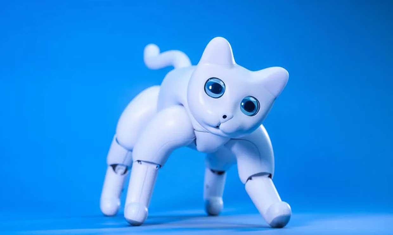 El gato robótico 'MarsCat', ¿la mascota del futuro?