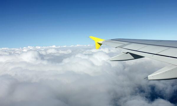 No tengas miedo a volar