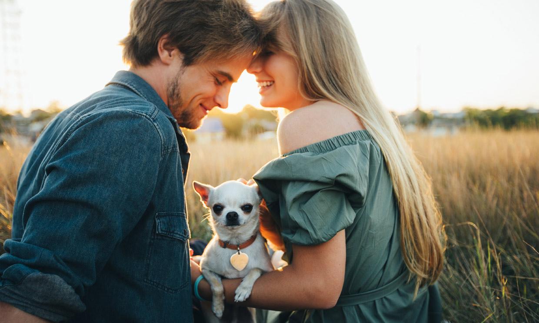 ¿Se liga más cuando se tiene perro?