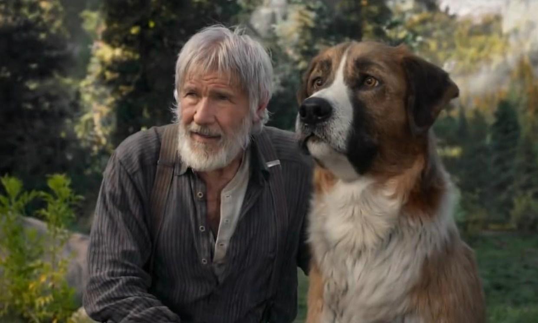 La Llamada De Lo Salvaje Así Es El Perro Que Sirvió De Modelo A Los Creadores De La Película