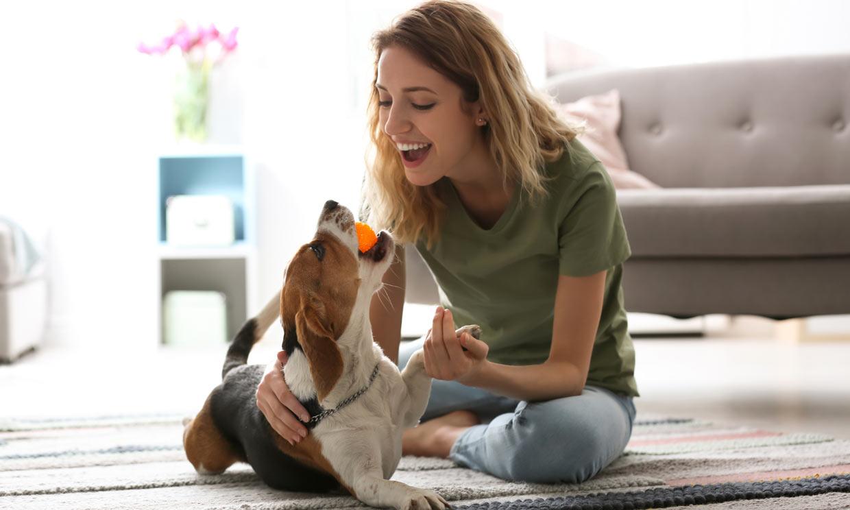 ¿Y tú, sabes cómo hacer feliz a tu perro?