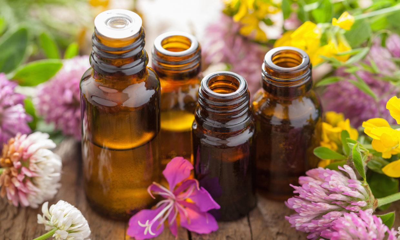 Cómo entrenar el olfato y el gusto en tu propia casa y fácilmente