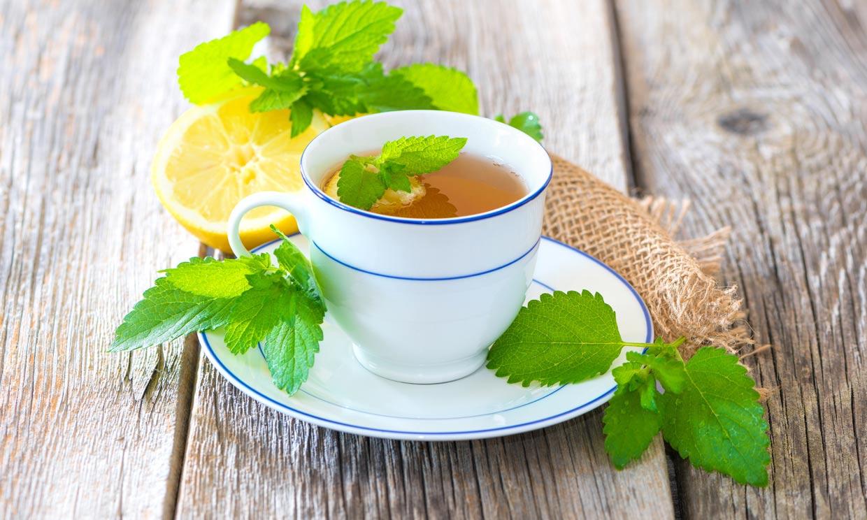 La melisa, una planta medicinal que te ayuda a relajarte