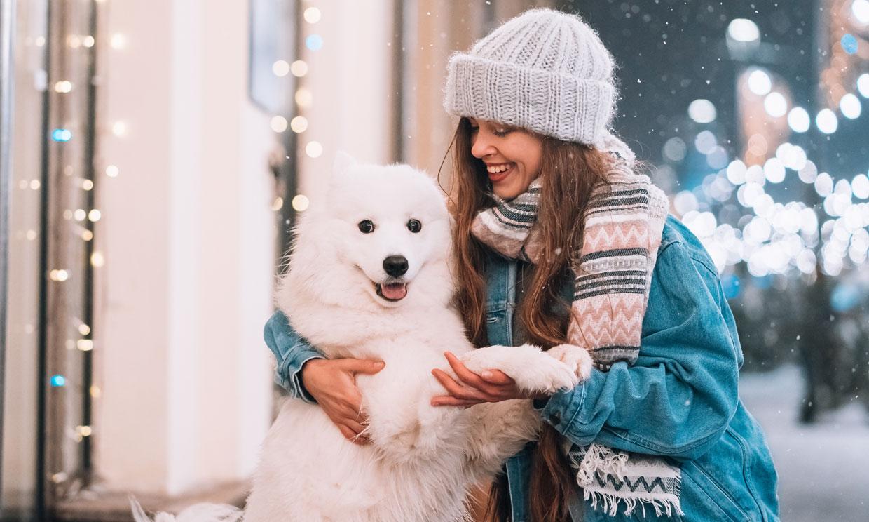 ¿Es bueno educar a un perro con el clicker?