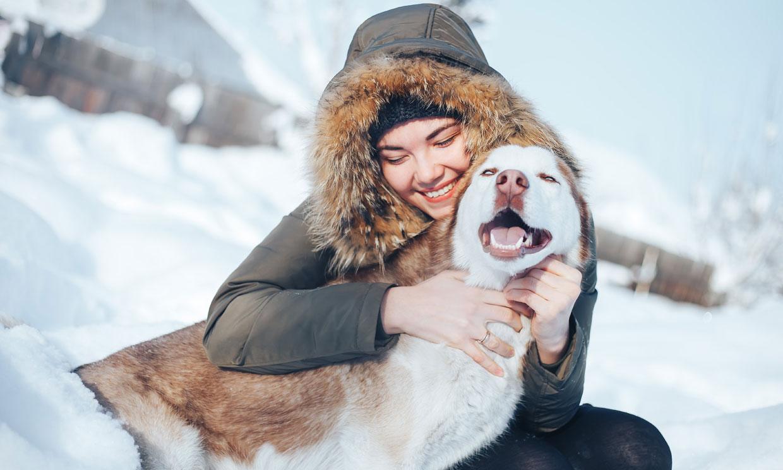 ¿Cómo alargar la vida de tu mascota?