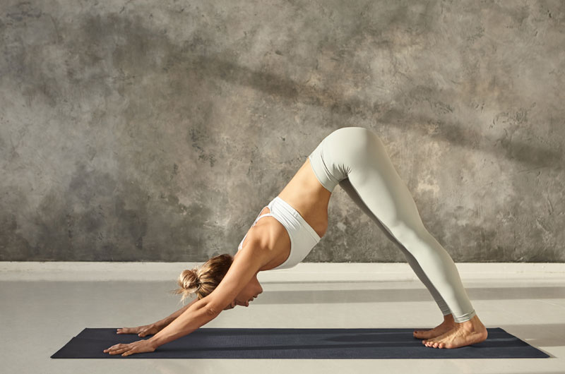 perro-yoga