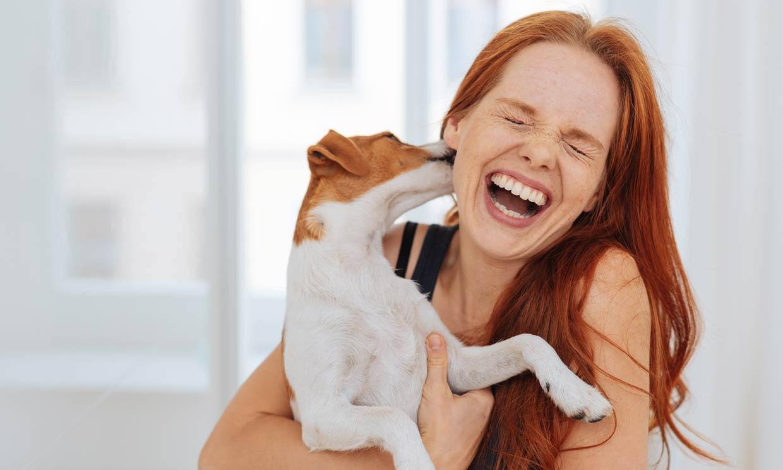 ¿Quieres poner a prueba tus conocimientos sobre los perros? Haz este test