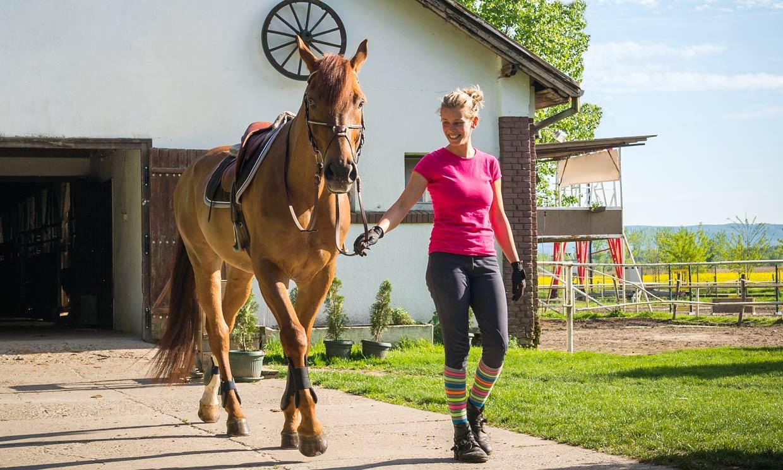 Si te gustan los caballos, te vas a enamorar de esta iniciativa
