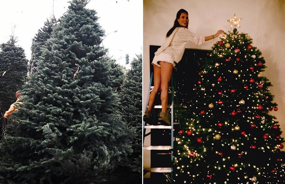 Helen lindes alessandra ambrosio carolina cerezuela - Los mejores arboles de navidad decorados ...