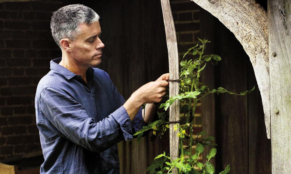 ¿Cultivar tu propia comida? Sigue los consejos de Aaron Bertelsen para crear un huerto ecológico en casa