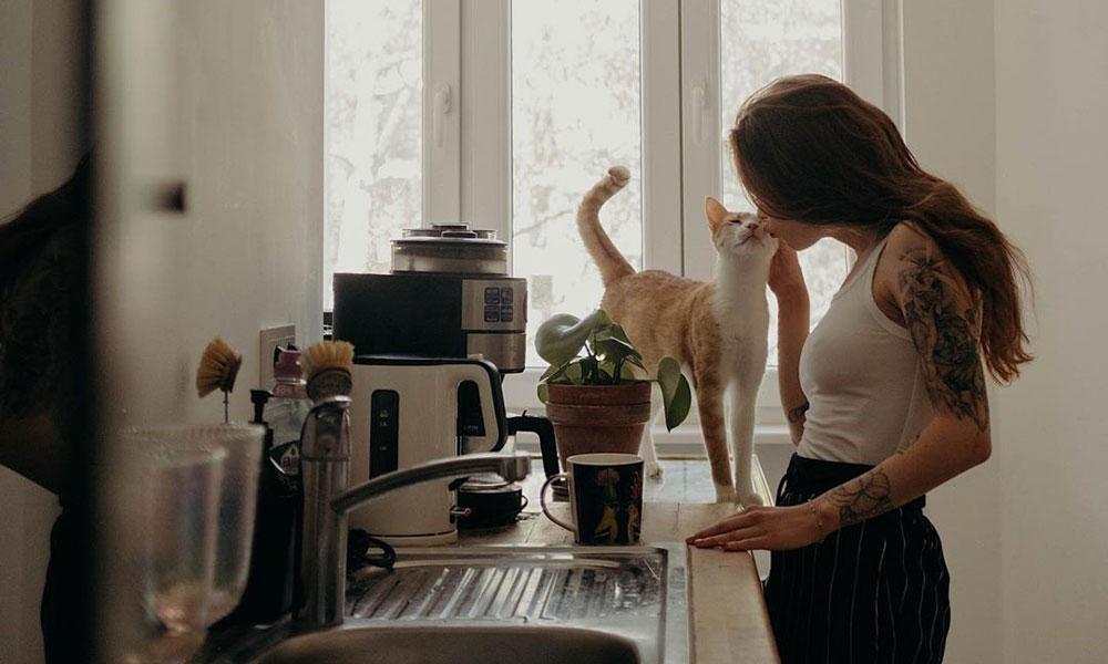 Mascotas conectadas, lo último en tecnología para cuidar como nunca a los reyes de la casa