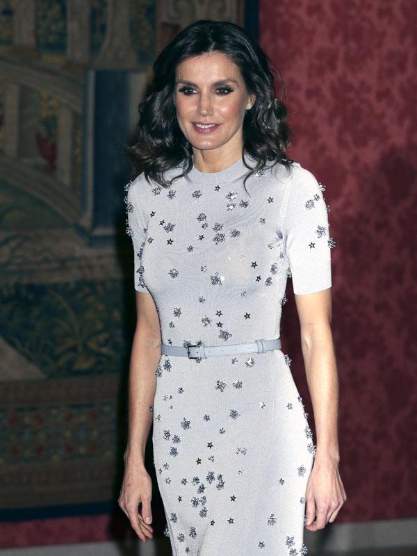 d1e22b9937d58 Reina Letizia  su vestido gris con estrellas en la recepción de ...