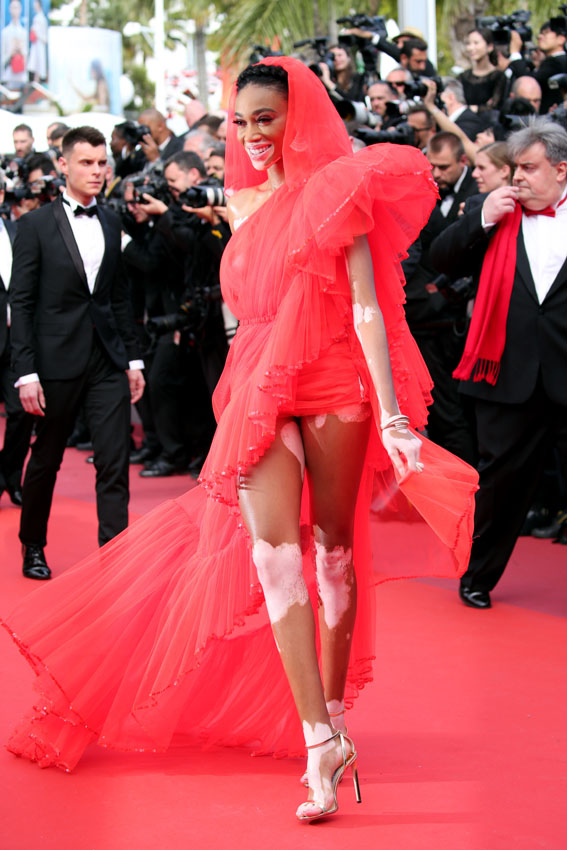cannes_red_carpet002a