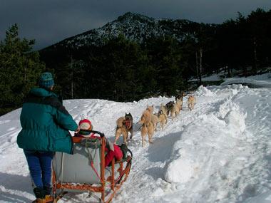Una aventura en la nieve