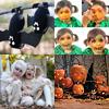 ¡LLegó Halloween! el día de Octubre más esperado por tus hijos y por toda la familia