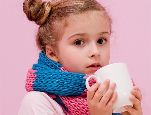 Qué alimentos nos ayudan a prevenir la gripe en los niños?
