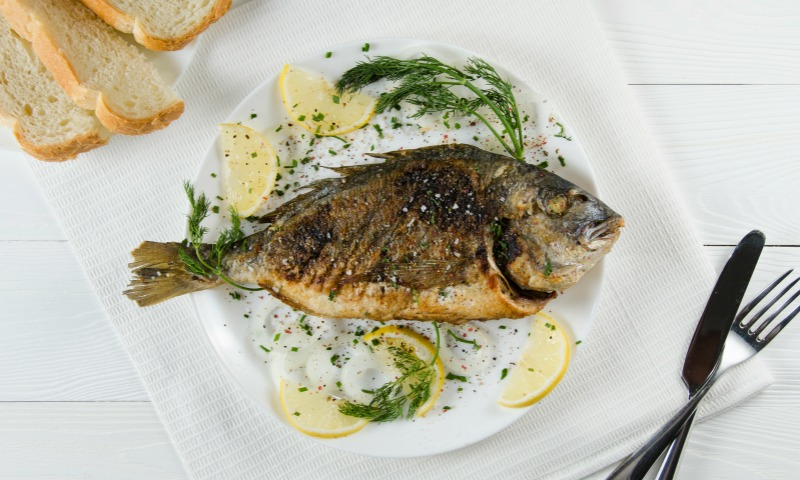 ¿Qué pescados podemos comer durante el embarazo?