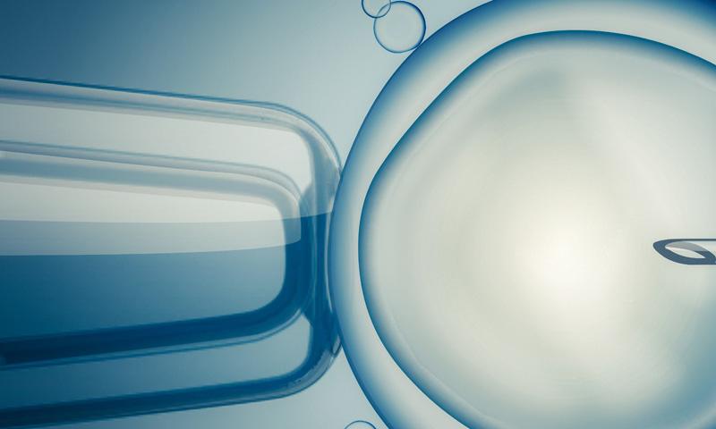 ¿Cómo es el proceso físico de una mujer después de una transferencia embrionaria?