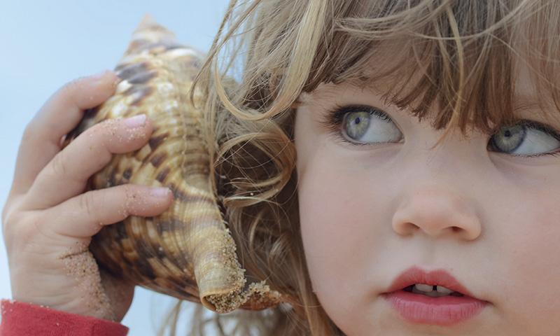 Enseña a tus hijos canciones infantiles sobre el mar y las especies marinas