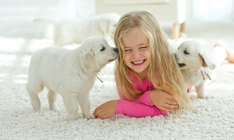 Inculca en tus hijos el amor por los animales con estas canciones infantiles