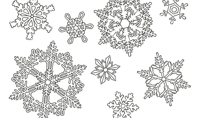 Pintar Mandalas La Mejor Manera De Hacer Tu Invierno Y El De Tus