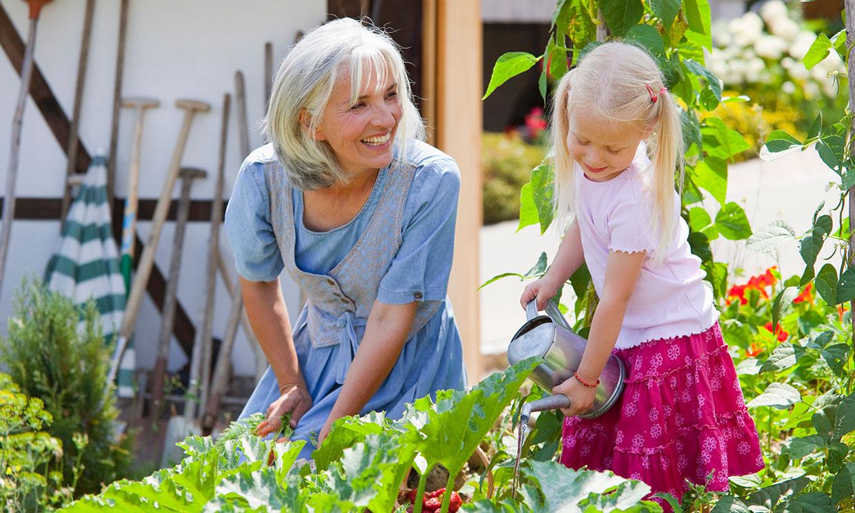 Plan en familia: plantar germinados para que los niños aprendan de la naturaleza