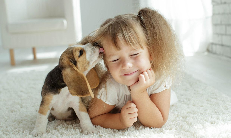 ¿Cuáles son las mejores mascotas para los niños?
