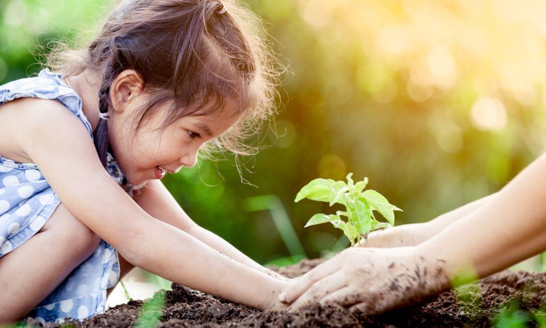 Tener espacios verdes en los colegios mejora la salud física y emocional de los niños