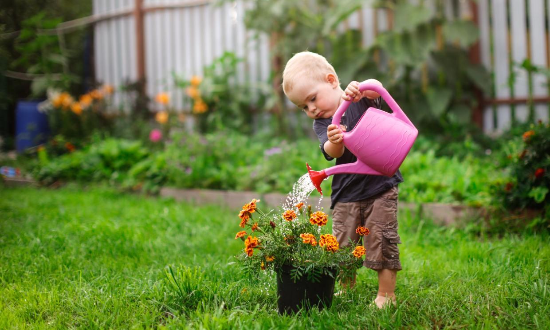 Estas son las mejores plantas para que los niños tengan su propio jardín