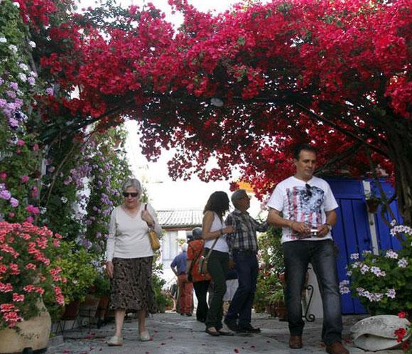 Los patios cordobeses, declarados Patrimonio de la Humanidad