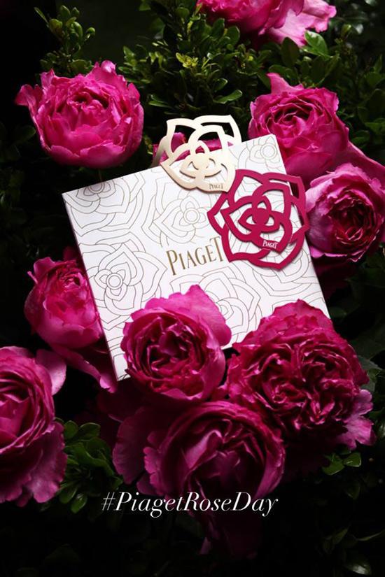 Vive con Piaget el primer 'Día de la Rosa', un evento único para una rosa única