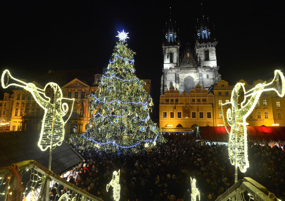 Muchos de los mercados de Praga ya están empezando a montar sus puestos y en los próximos días abrirán sus puertas. El más espectacular y grande de la ciudad, el Mercado de la Plaza de la Ciudad Vieja, ya tiene listos todos los preparativos. Su mayor emblema, el árbol de navidad que se erige en mitad de la plaza, ya ha sido elegido. El árbol de este año, de unos 24 metros de altura, proviene de la región de Kutná Hora. Creció en un parque de un pequeño pueblo que decidió sustituirlo por un abeto nuevo, y lo cedió a la organización del mercado navideño. Siguiendo la tradición de los últimos años, no ha sido talado de ningún bosque, sino que ha crecido en un espacio privado.