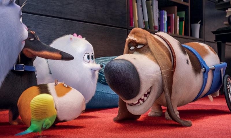 'Mascotas', la película que está batiendo récords en Reino Unido