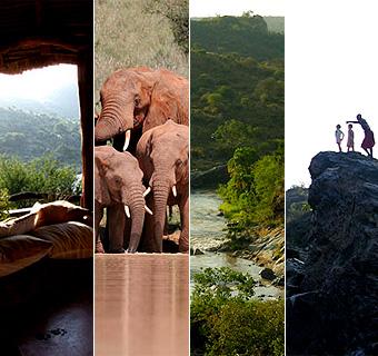 Lunas de Miel de ensueño: Safari de lujo en