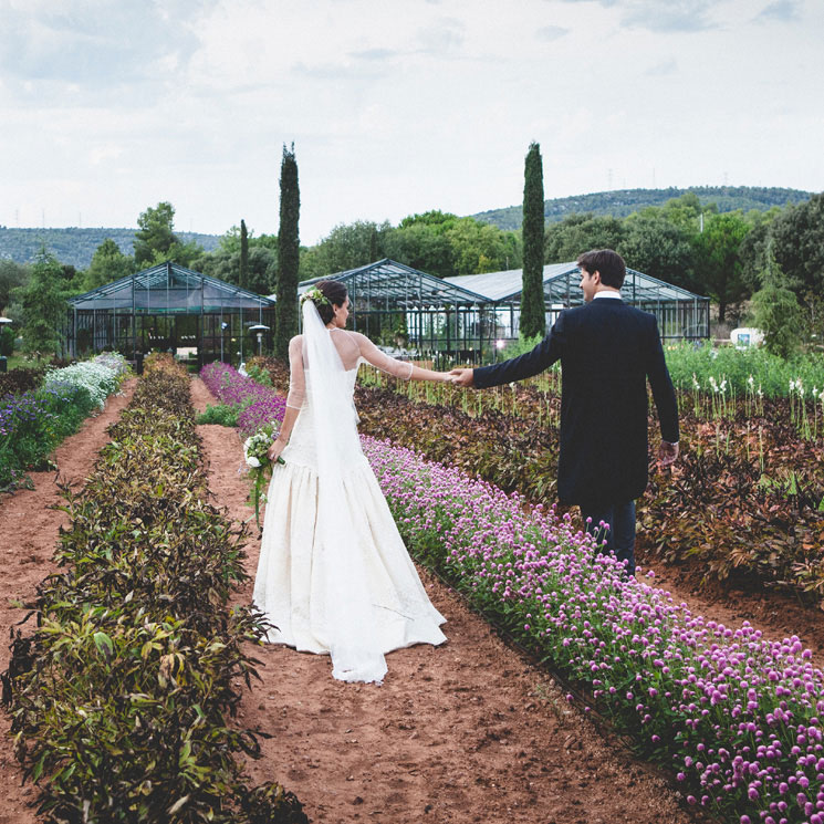 En busca de la finca perfecta: ¿celebrarías tu boda en un invernadero?